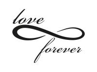1 x 2 Plott Aufkleber Love Forever Unendlichkeitszeichen Unendlich Zeichen NEU
