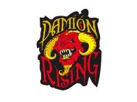 1 x Aufkleber Damion Rising Sticker Shocker Tuning Autoaufkleber Dub Fun Gag